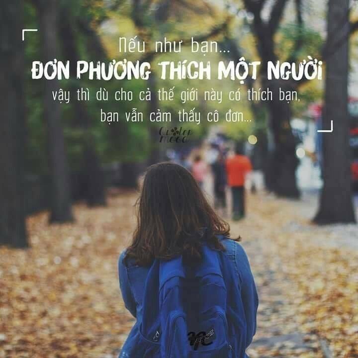 Top-5-bai-tho-cam-dong-ve-tinh-don-phuong-5