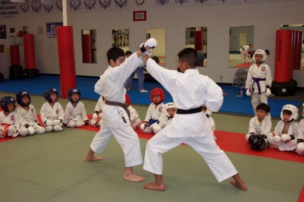 Top-5-trung-tam-day-vo-karate-tphcm-3